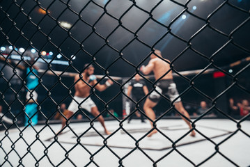 Two fighters in ultimate fight cage during the match