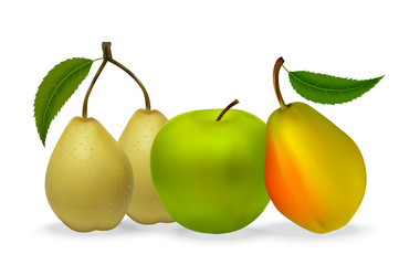 Still life of apples and pears with leaves with realistic shadows on a white background. Vector illustration.