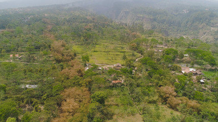 mountain landscape slopes mountains covered with green tropical forest. Jawa, Indonesia. aerial view mountain forest with large trees and green grass.