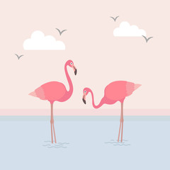 This is an image of the flamingo and the beach.