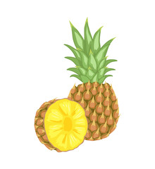 Pineapple Tropical Plant Edible Fruit Poster