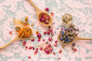 Spoons with aromatic dried flowers and essential oil on color table