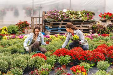 Working in flower field