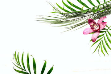 Greeting card template with exotic foliage