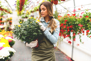 Florist holding pot of flowers