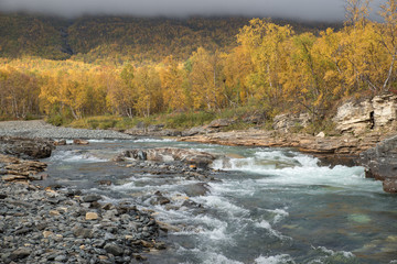 Wall Mural - Autumn river landscape in a mountain landscape. Abisko national park in Sweden.
