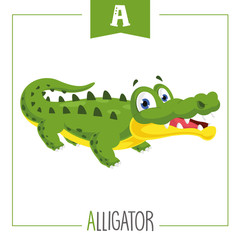 Vector Illustration Of Alphabet Letter A And Alligator
