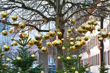 Golden baubles hanging on tree.