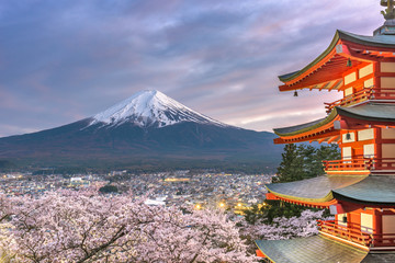 Fujiyoshida, Japan view of Mt. Fuji and Pagoda Wall mural
