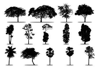set of tree silhouettes of trees
