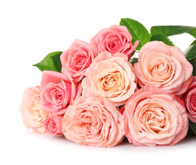 Beautiful bouquet of pink roses on white background