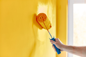 Male hand painting wall with paint roller. Painting apartment, renovating with sunflower color paint