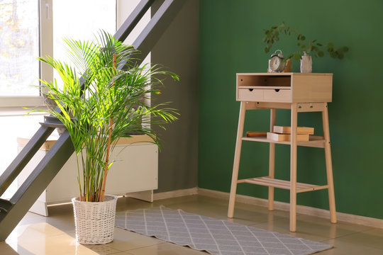 Interior of modern room with decorative Areca palm in pot