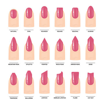 Big Set of Different nail shapes. Manicure Guide. Vector illustration