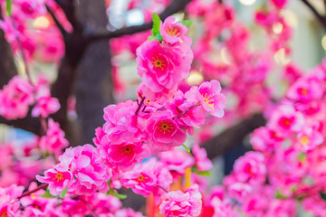 atrificial blooming pink cherry tree, natural background.
