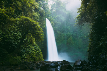 Powerful waterfall in Bali. Tropical forest and waterfall