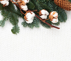 Knitted winter background with fir and branch of cotton plant. Copy space. Top view