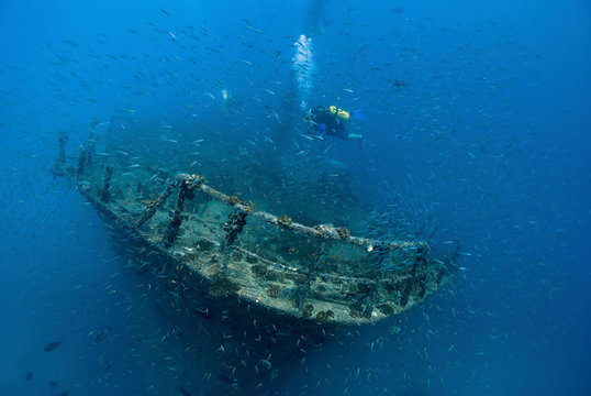 Scuba diver on a wreck in blue water surrounded by thousands of fish