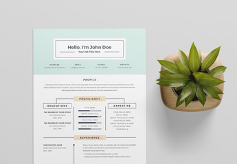 Resume Layout with Teal Elements