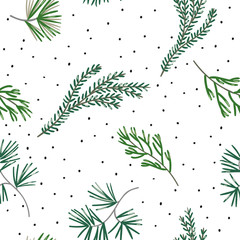 Christmas seamless pattern, white background. Green pine twigs, snow. Vector illustration. Nature design. Season greeting digital paper. Winter Xmas forest holidays
