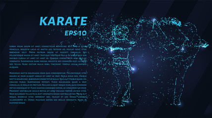 Karate. A grid of blue stars in the night sky. Points of light create the shape of karate. Sports, martial arts, fight and other concepts illustration or background.