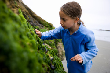 Young girl looking at shellfish on a mossy rock.