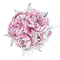 floral illustration.  Botanic composition for wedding or greeting card. branch of flowers - abstraction peonies , romantic
