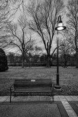 Park Bench in the Evening