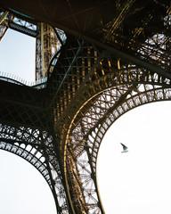 Basement of Eiffel Tower