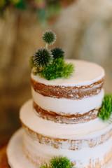 Rustic, Woodsy Wedding Cake