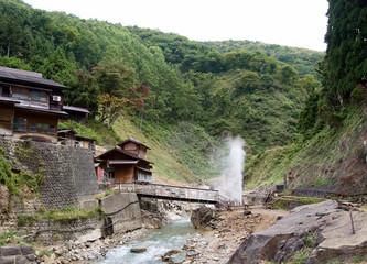 Japan Nagano Snow monkey park