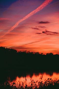 Swamp/lake bathing in the dramatic morning sunrise colors