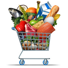 Grocery And Groceries