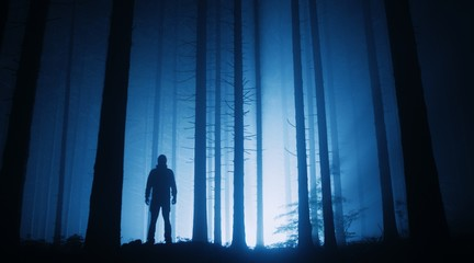 Silhouette of person in misty forest
