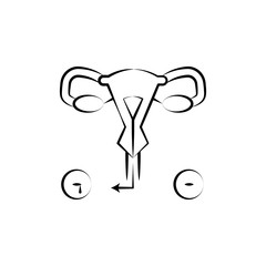 Female organs, uterus, medical hand drawn icon. One of the women health icons for websites, web design, mobile app
