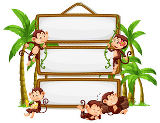 Monkey with signboard on white background