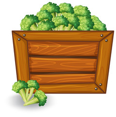 Broccoli on wooden banner
