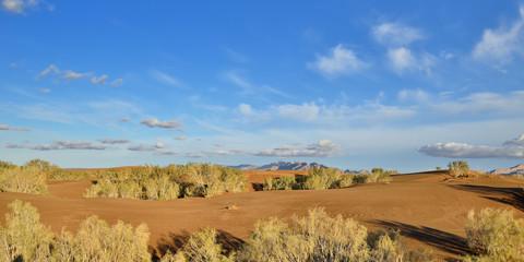 Iran, Orange sand dunes by the Mesr oasis on the Dasht-e Kavir desert near Khur city