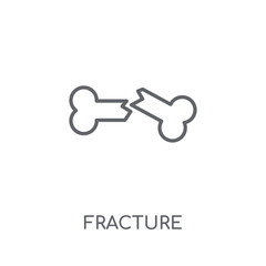 Fracture linear icon. Modern outline Fracture logo concept on white background from Insurance collection