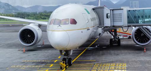 Avion gros-porteur