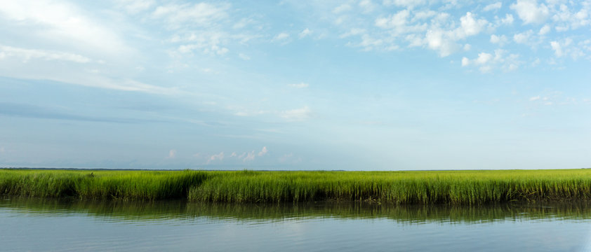 marsh grass and coastal barrier island inlet at high tide