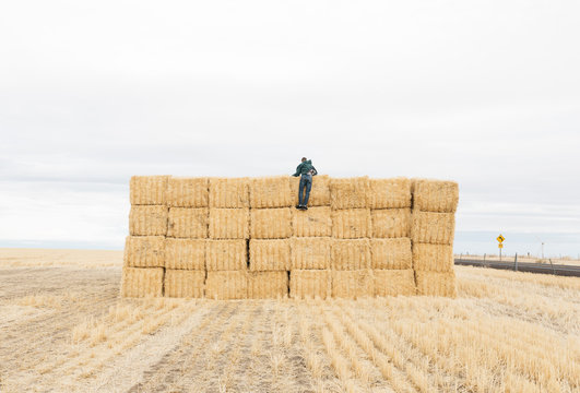 Young adult male climbing on stacks of hay in recently plowed field