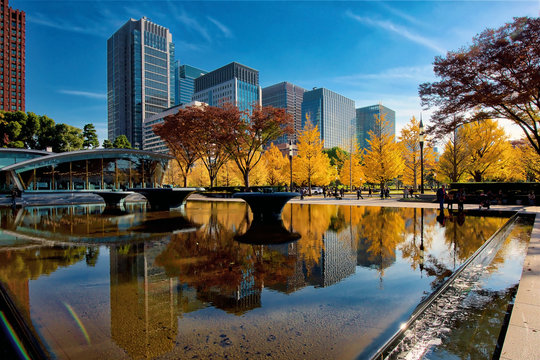 Marunouchi, Tokyo's Central Business District, in autumn