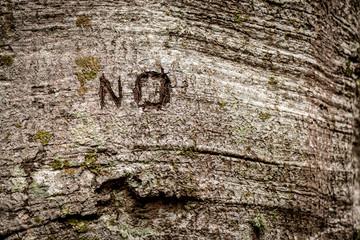 marca no en el árbol con textura de fondo de pantalla