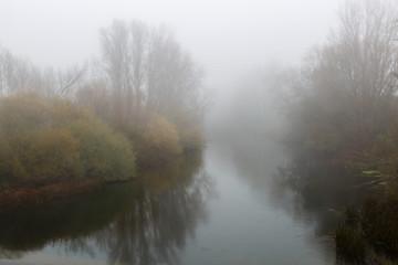 Paisaje en otoño con el Río Órbigo y vegetación de ribera entre la niebla.