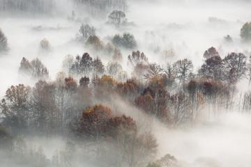 Jesienny krajobraz, Włochy - 237352589