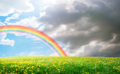 spring field landscape with flowers and rainbow