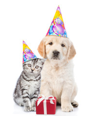 Golden retriever puppy and tabby kitten in birthday hats with gift box. isolated on white background