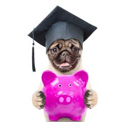 Smart graduated dog holds piggy bank. isolated on white background