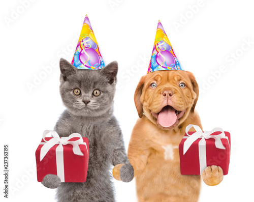 Cat And Puppy In Birthday Hats With Gift Boxes Together Isolated On White Background